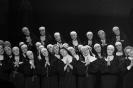 SisterHood The Musical